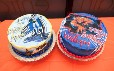 William and Adam's 3rd Birthday Party – Appleseeds