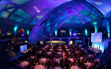 Tisch MS Research Center – Museum of Natural History